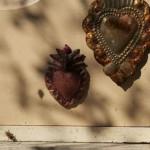hearts-in-beeyard
